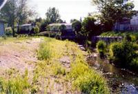 meadowrestorede061801